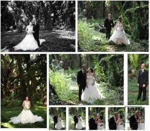 wedding couple in a maui jungle
