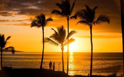 Honeymoon Love in Maui